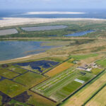 International Saline Futures Conference addresses climate change and food security